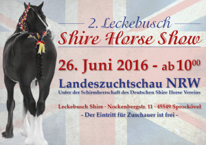Shirehorse-Show-300x212